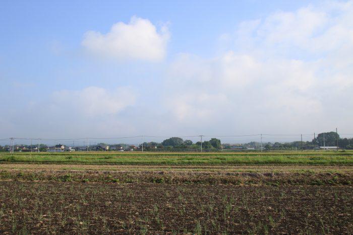5月16日(火) AM 6:53 前橋市大前田町
