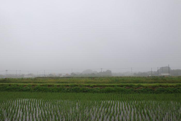 6月28日(水) AM 7:23 前橋市大前田町
