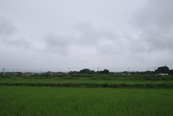 8月2日(水) AM 7:27 前橋市大前田町