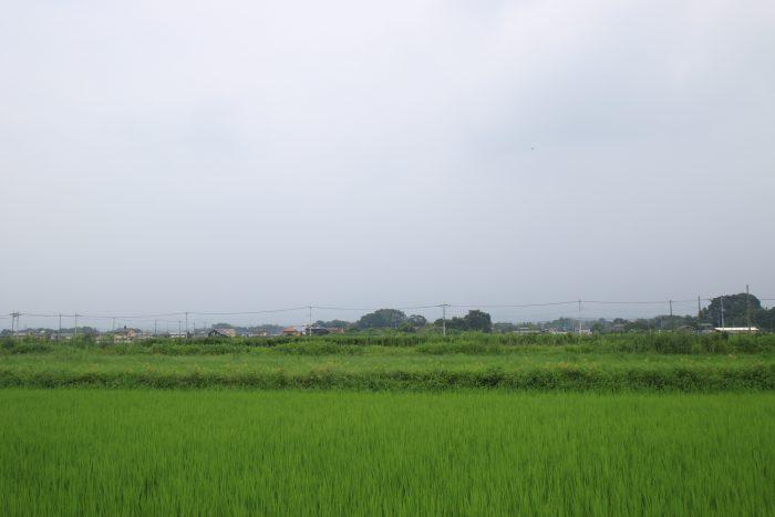 8月6日(日) PM 0:22 前橋市大前田町