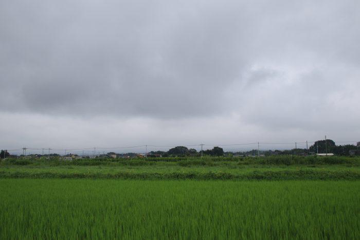 8月11日(金) PM 0:34 前橋市大前田町