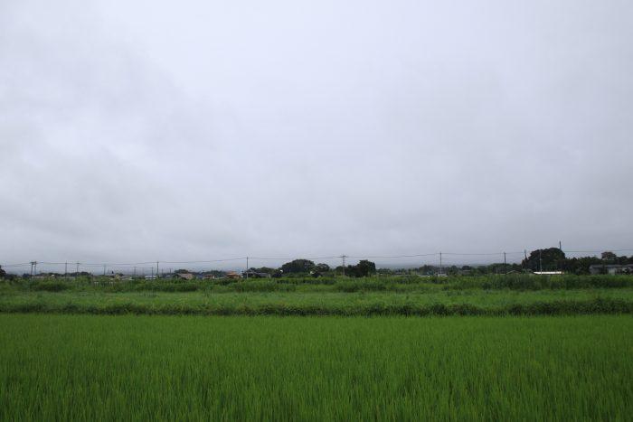8月15日(火) AM 11:05 前橋市大前田町