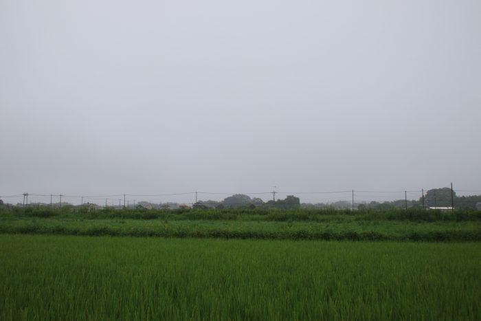 8月16日(水) AM 8:43 前橋市大前田町