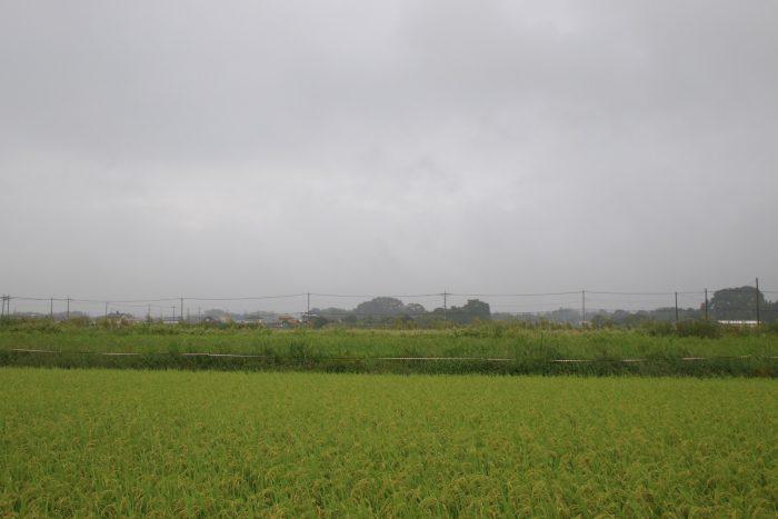 9月6日(水) AM 7:25 前橋市大前田町