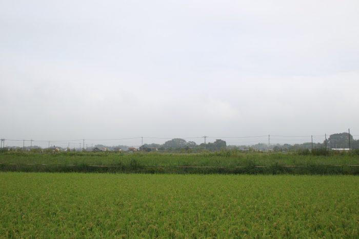 9月7日(木) AM 7:24 前橋市大前田町