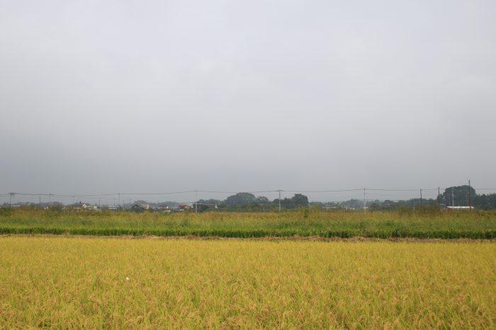 9月27日(水) AM 8:34 前橋市大前田町