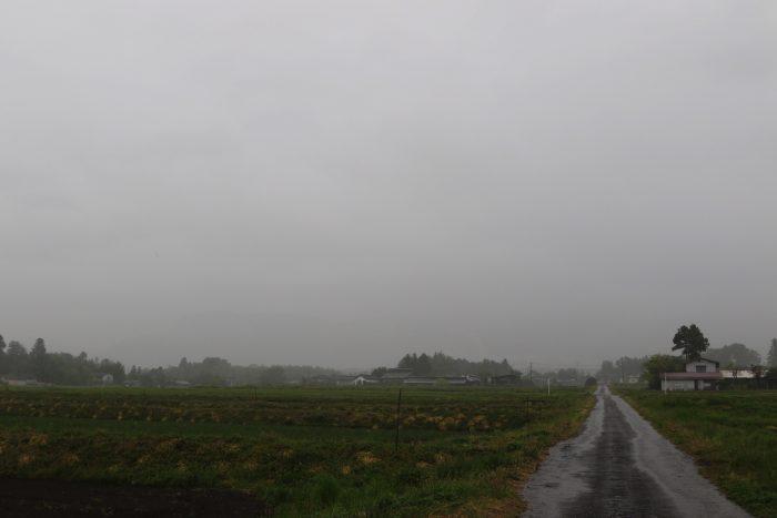 4月25日(水) AM 7:38 前橋市苗ケ島町