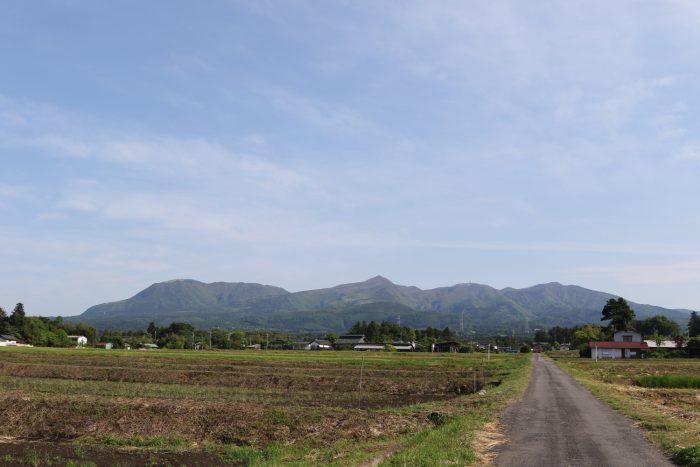 5月11日(金) AM 7:43 前橋市苗ケ島町