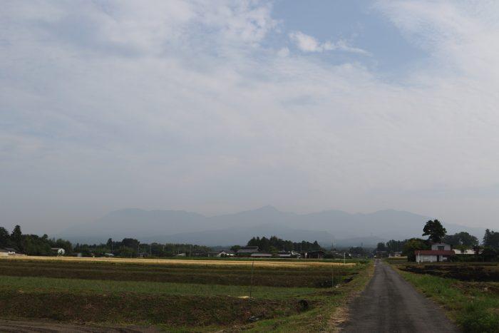 5月29日(火) AM 7:35 前橋市苗ケ島町