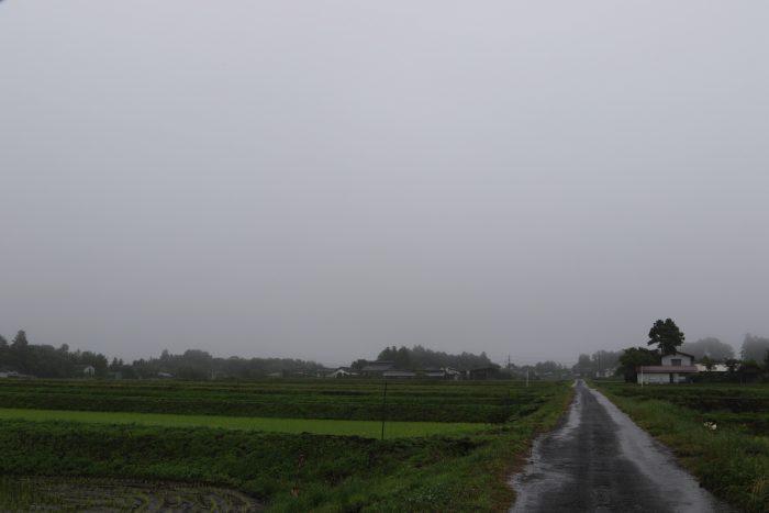 6月11日(月) AM 7:30 前橋市苗ケ島町