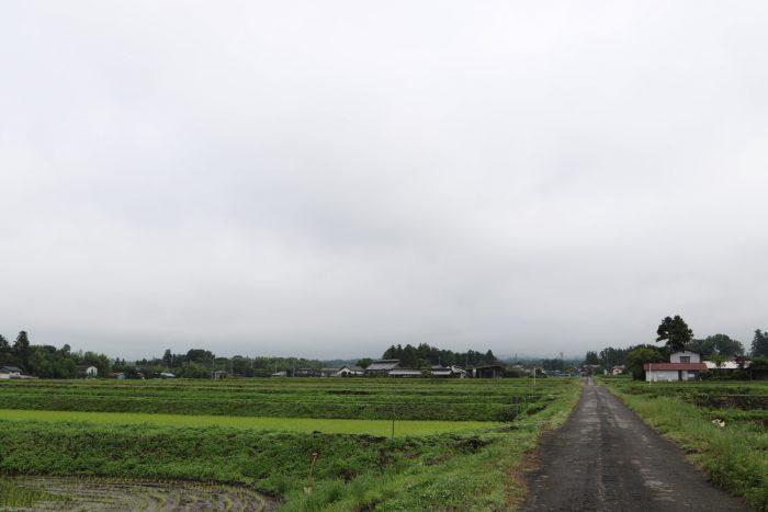 6月12日(火) AM 7:20 前橋市苗ケ島町