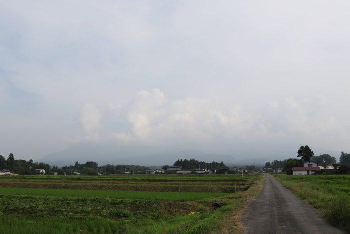 7月3日(火) AM 7:58 前橋市苗ケ島町