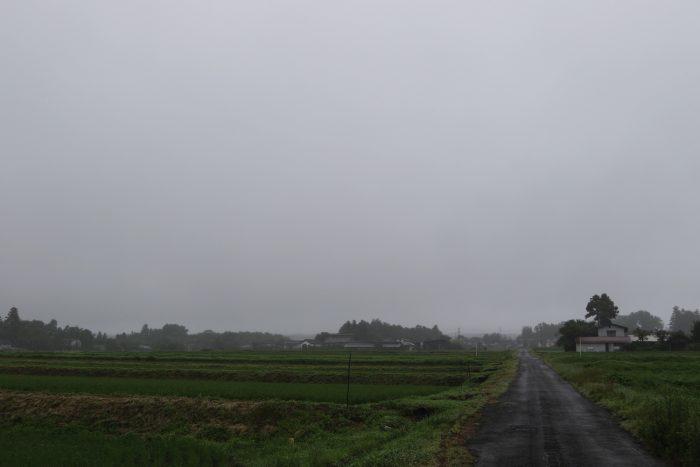 7月7日(土) AM 8:31 前橋市苗ケ島町