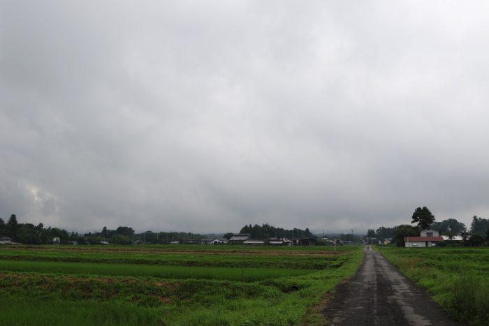 7月12日(木) AM 7:30 前橋市苗ケ島町