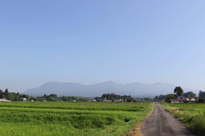 7月24日(火) AM 7:33 前橋市苗ケ島町