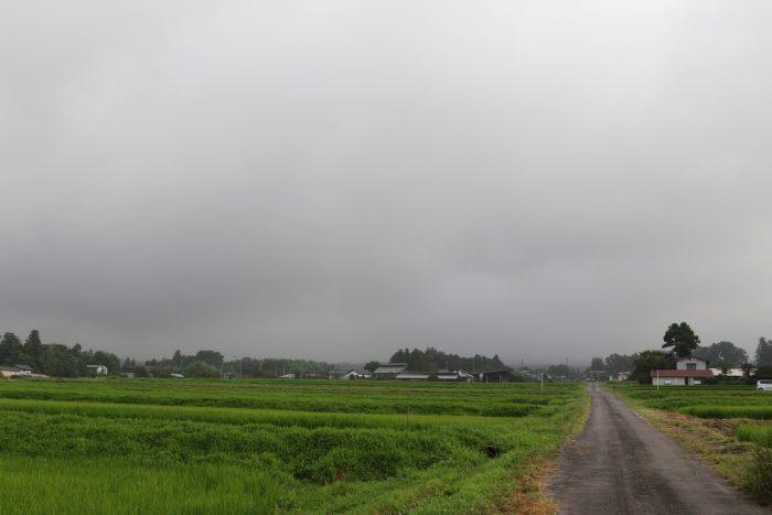 7月25日(水) AM 7:36 前橋市苗ケ島町