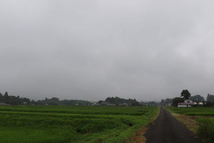 7月26日(木) AM 7:46 前橋市苗ケ島町