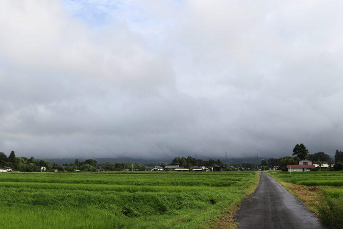 7月29日(日) AM 7:34 前橋市苗ケ島町