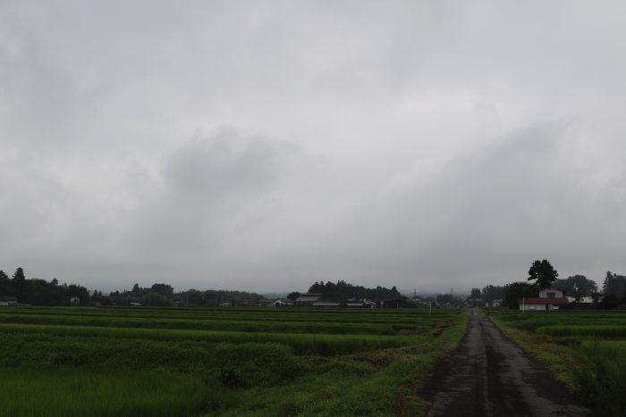 7月31日(火) AM 7:26 前橋市苗ケ島町