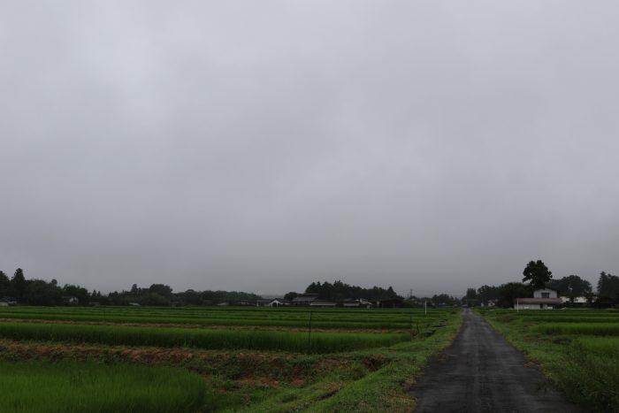 8月7日(火) AM 7:40 前橋市苗ケ島町