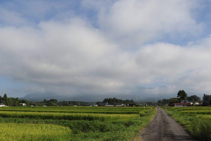 8月22日(水) AM 7:29 前橋市苗ケ島町