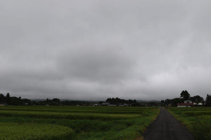 8月24日(金)  AM 7:35 前橋市苗ケ島町