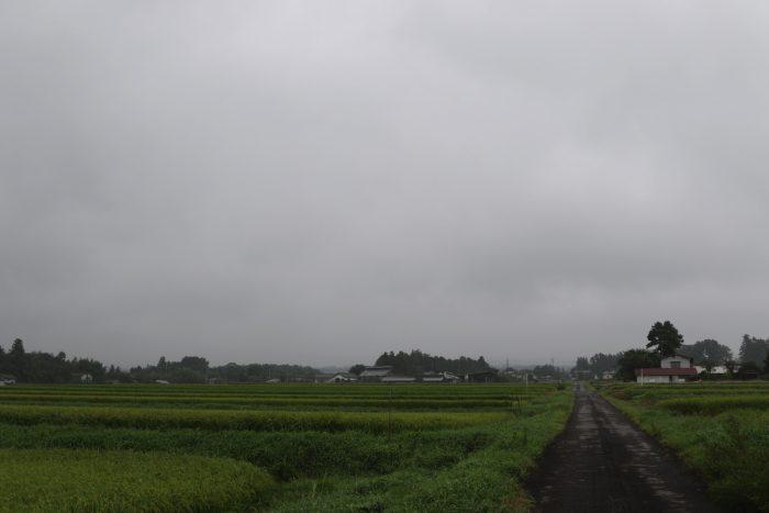 8月28日(火) AM 7:32 前橋市苗ケ島町