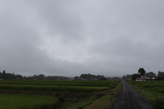 9月3日(月) AM 7:31 前橋市苗ケ島町