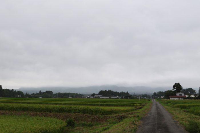9月4日(火) AM 7:38 前橋市苗ケ島町