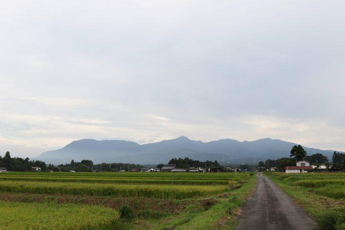 9月7日(金) AM 9:07 前橋市苗ケ島町