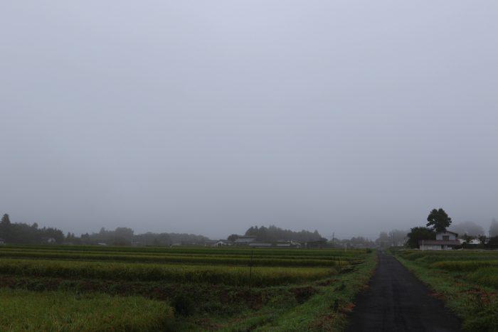 9月9日(日) AM 6:42 前橋市苗ケ島町