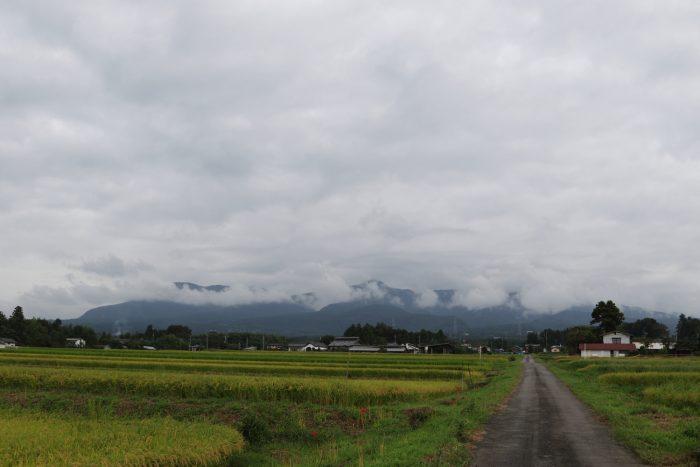 9月12日(水) AM 7:36 前橋市苗ケ島町