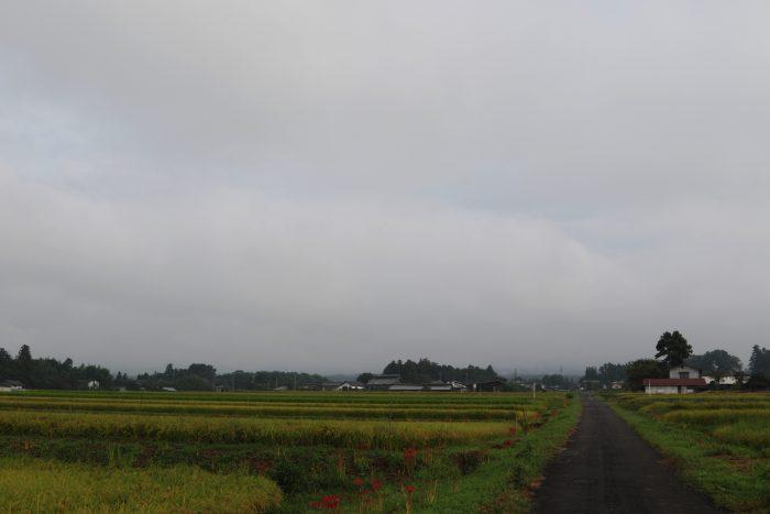 9月14日(金) AM 7:38 前橋市苗ケ島町