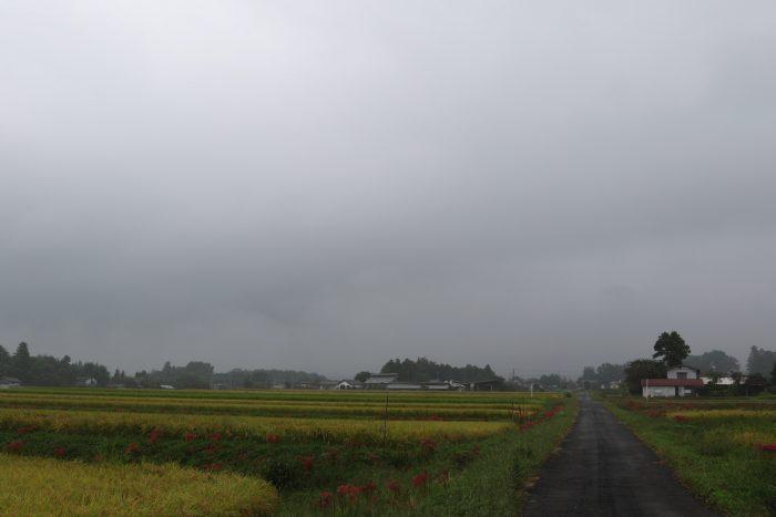 9月25日(火) AM 8:24 前橋市苗ケ島町