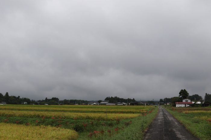 9月26日(水) AM 10:12 前橋市苗ケ島町