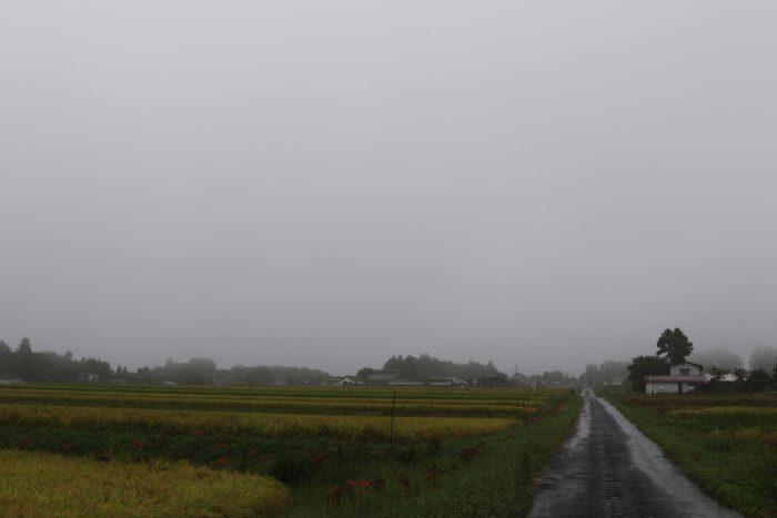 9月27日(木) AM 7:44 前橋市苗ケ島町