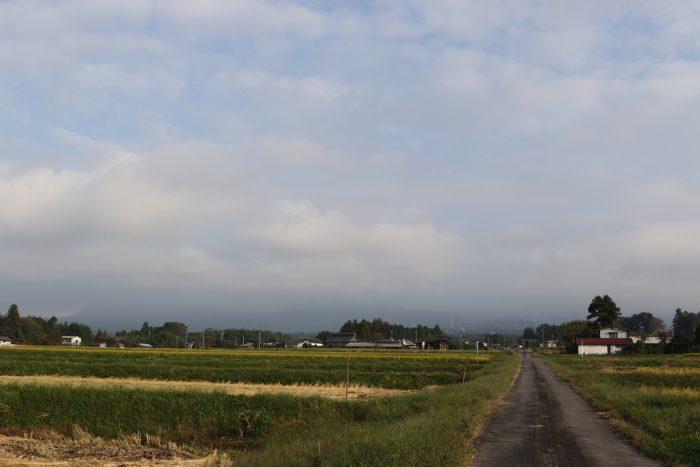 10月9日(火) AM 7:31 前橋市苗ケ島町