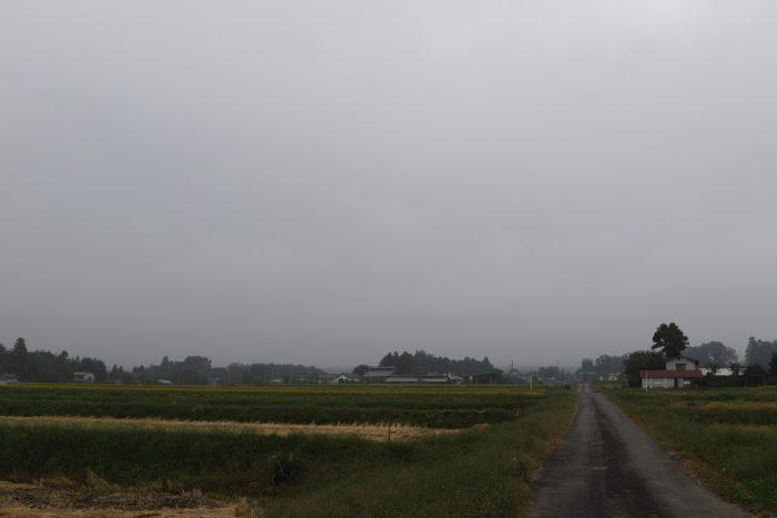 10月11日(木) AM 7:38 前橋市苗ケ島町