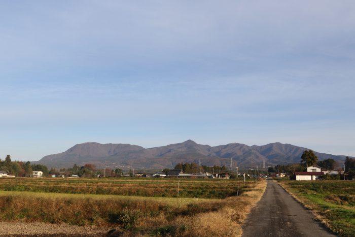 11月21日(水) AM 7:33 前橋市苗ケ島町