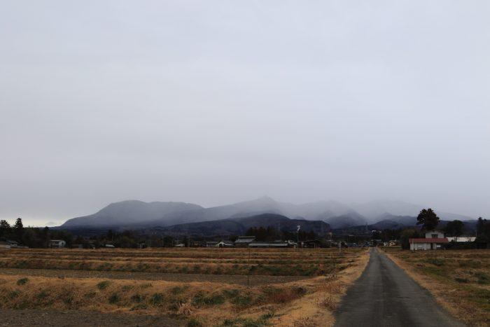 1月22日(火) AM 7:31 前橋市苗ケ島町