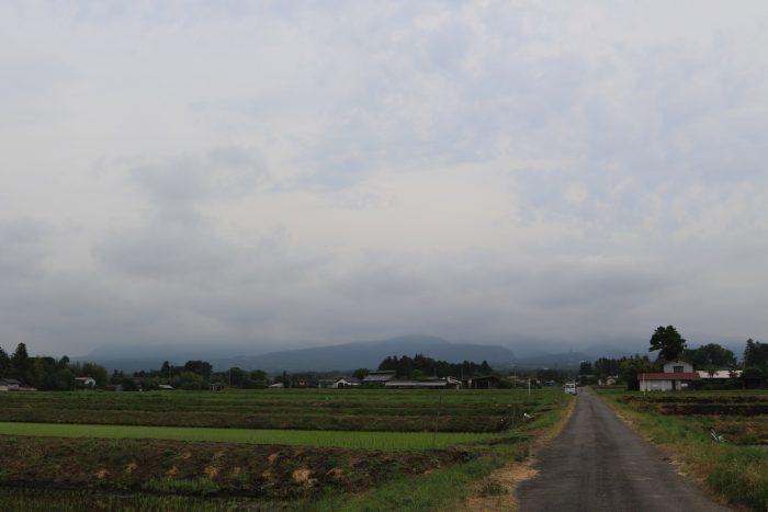 6月5日(水) AM 7:42 前橋市苗ケ島町