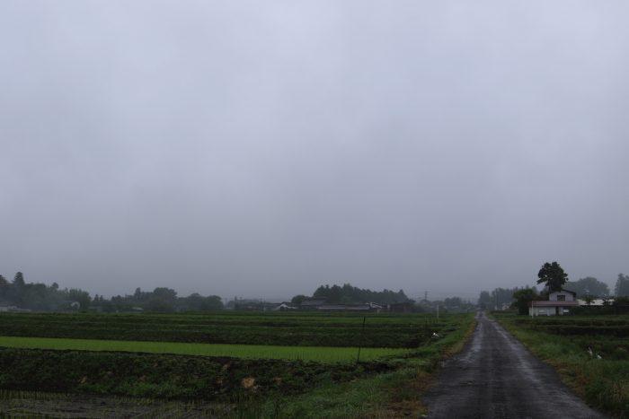6月10日(月) AM 7:40 前橋市苗ケ島町