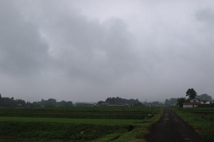 6月21日(金) AM 7:32 前橋市苗ケ島町