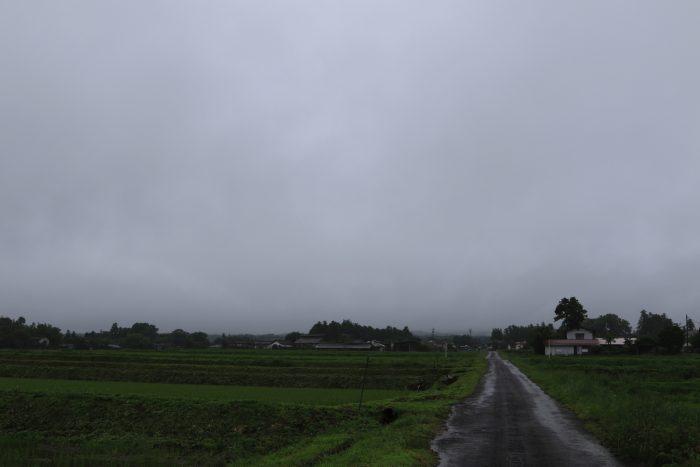 6月24日(月) AM 7:40 前橋市苗ケ島町
