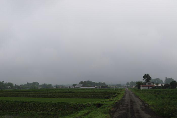 6月25日(火) AM 8:01 前橋市苗ケ島町