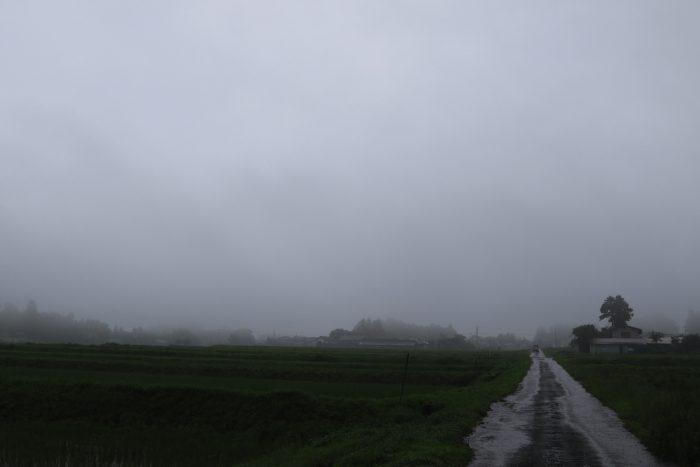 7月4日(木) AM 7:38 前橋市苗ケ島町