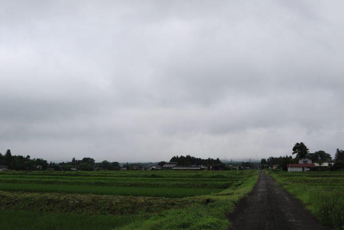 7月8日(月) AM 7:37 前橋市苗ケ島町