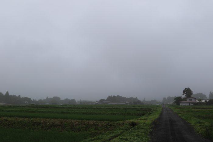 7月10日(水) AM 7:44 前橋市苗ケ島町