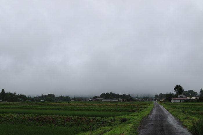 7月16日(火) AM 7:40 前橋市苗ケ島町