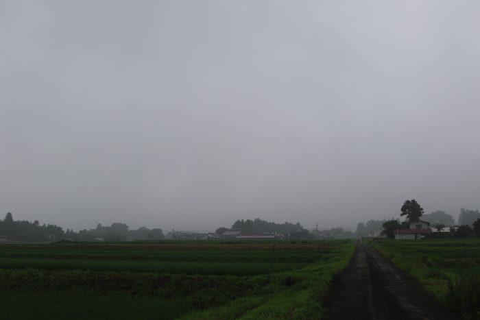 7月18日(木) AM 7:35 前橋市苗ケ島町